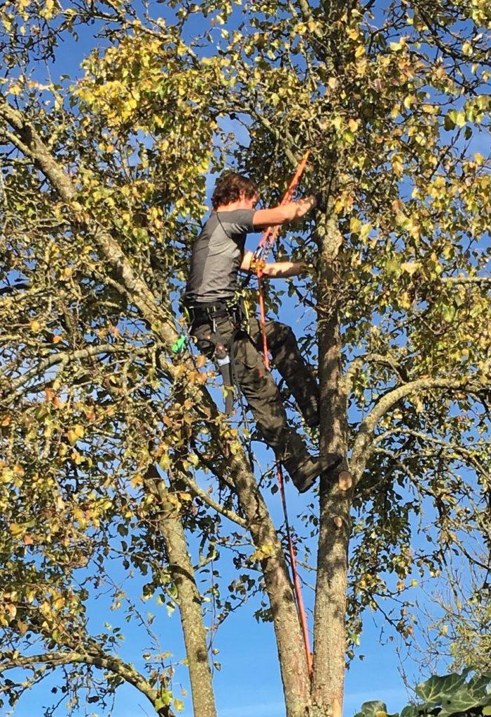 Bomenridder Anne foto Miep Bos
